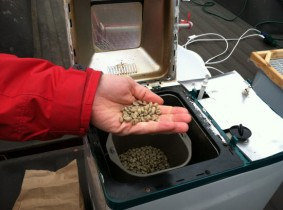 Green Beans in Coffee Roaster v. 1.0 (R.I.P.)